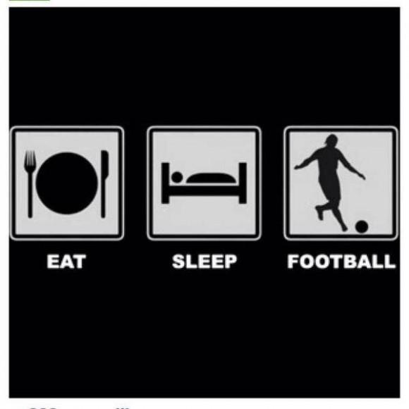 Simple life of a football fan